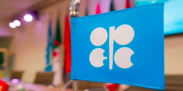 OPEC logo on a flag
